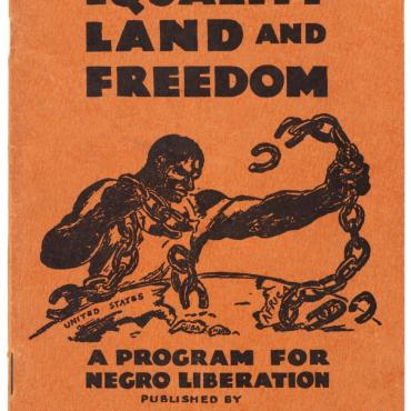 League of Struggle for Negro Rights Program